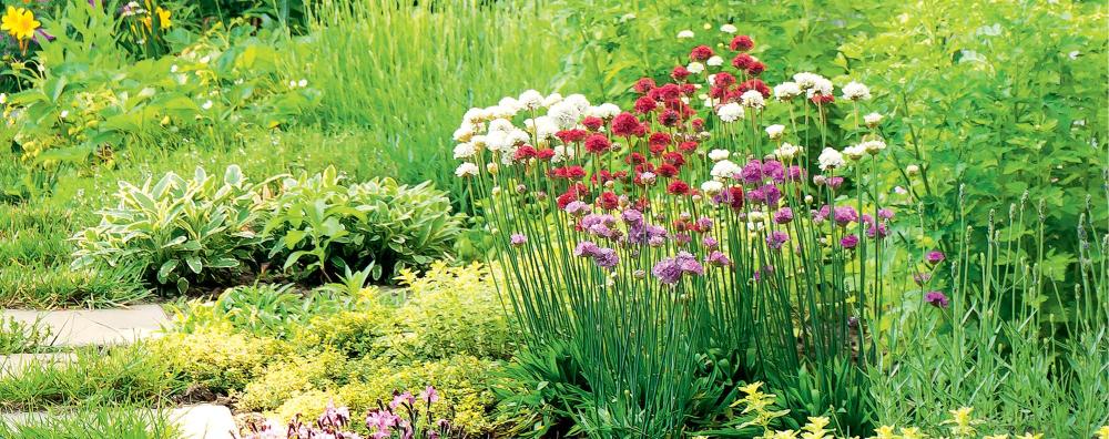 Kwiaty upiększeniem